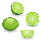 Limes, four views. Fresh fruit, natural limes, four views: whole, half, slice, wedge. Graphic illustrations  on white background. EPS8 Includes gradient mesh Stock Image
