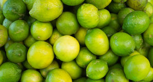Limes fresh Stock Photography
