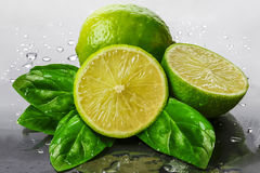 Limes and Fresh Mint Leaves Stock Image