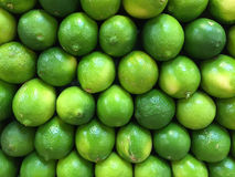 Limes. Fresh, ripe limes stacked in rows at a local farmers market Royalty Free Stock Photography