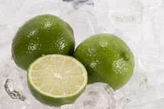 Limes in Ice Stock Photo