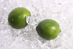 Limes on Ice. Two whole limes on a bed of ice Royalty Free Stock Image