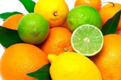 Limões, laranjas e cais Imagem de Stock Royalty Free