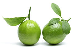 Limes with leaves isolated on white background. Royalty Free Stock Photo
