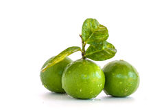 Limes and leaves isolated Stock Images