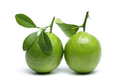 Limes with leaves isolated on white background. Royalty Free Stock Photos