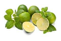 Limes and Lemon Balm Stock Photo