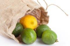 Limes And Lemon Stock Photography