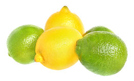 Limes and lemons. Stock Photography