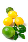Limes and lemons. A group of two limes and three lemons with leaves isolated on white background Royalty Free Stock Image