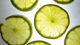 Limes stock video
