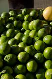 Limes. For sale in the outdoor market Stock Image