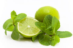 Limes and mint Royalty Free Stock Image