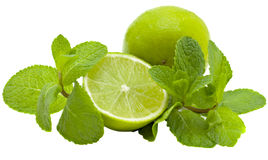Limes and mint. Green limes  and branch of mint isolated on a white background Royalty Free Stock Photography