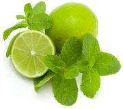 Limes and mint Royalty Free Stock Images