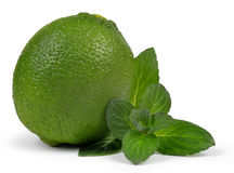 Limes with mint leaves Stock Image