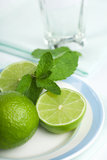 Limes and mint on plate Royalty Free Stock Photos