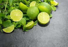 Limes and mint Top view.  stock images