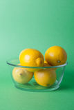 Limes_oranges_lemon_stock_pictures Arkivbilder