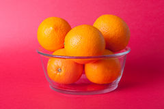 Limes_oranges_lemon_stock_pictures Royaltyfri Foto