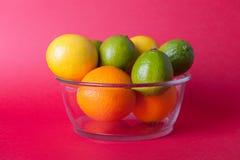Limes_oranges_lemon_stock_pictures Royaltyfria Foton