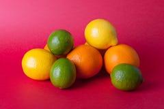 Limes_oranges_lemon_stock_pictures Royaltyfria Bilder