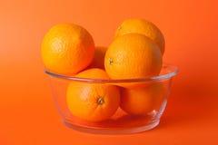Limes_oranges_lemon_stock_pictures Fotografering för Bildbyråer