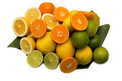 Limes oranges and lemons Royalty Free Stock Images