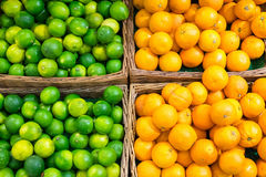 Limes and oranges Royalty Free Stock Photos