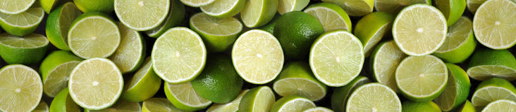 Limes-panorama Royalty Free Stock Image