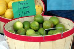 Limes For Sale. Photographed at a local outdoor market in Florida Royalty Free Stock Photos