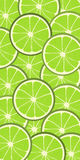 Limes. Seamless vector background pattern with limes Royalty Free Stock Images