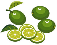 Limes with slices. Illustration of limes with slices and leaves Stock Photography