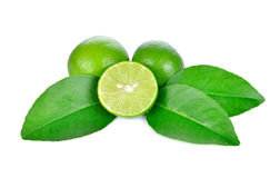 Limes with slices and leaves Stock Image