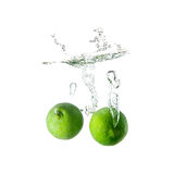 Limes splash on water on white background Stock Photo