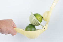 Limes and a squeezer Stock Photos
