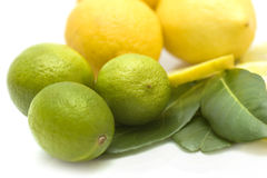 Limes und lemons with leafes Royalty Free Stock Photo