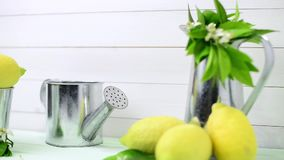 Limes and vintage metal retro watering cans. Over light green wooden table stock video
