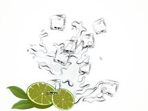 Limes and water Stock Photography