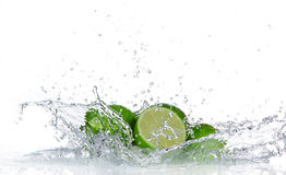 Limes with water splash Royalty Free Stock Image