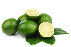 Limes on white Stock Images