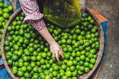 Limes in the wicker basket on the Vietnamese market. Asian food concept Royalty Free Stock Images