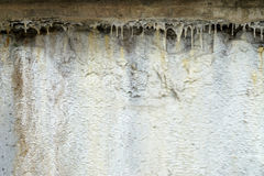 Limescale,white mineral deposit on the wall Stock Photo