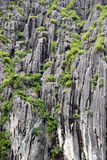 Limestone. Sheer limestone cliffs with vegetation in ha long bay, vietnam stock photo
