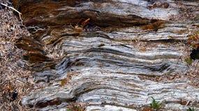limestone Fotografia de Stock Royalty Free