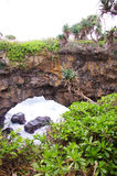 Limestone arch, Tonga. The rugged coastline of Tonga , which is worn away includes this spectacular natural limestone arch royalty free stock image