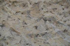 Limestone Background Stock Image