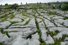 Limestone, The Burren National Park, Ireland Royalty Free Stock Images