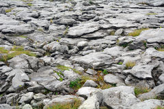 Limestone, The Burren National Park, Ireland Royalty Free Stock Photography