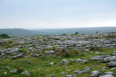 Limestone, The Burren National Park, Ireland Royalty Free Stock Photos